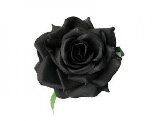 2 Packs Unique Black Rose Seeds