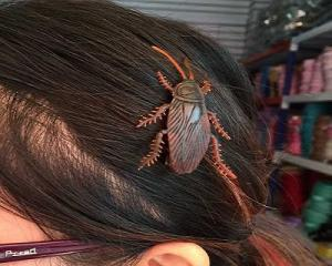 Creative 3 pcs Cockroach Hairclips